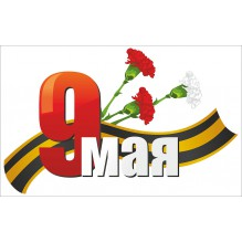 """Наклейка """"9 мая. Гвоздики"""""""