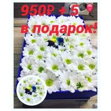 Подарочная коробочка с живыми цветами