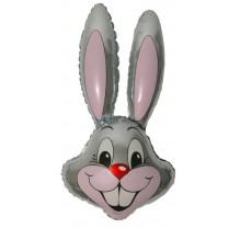 Заяц  / Rabbit