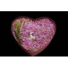 """Коробка с хризантемами """"Сердце"""""""
